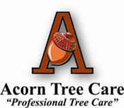 Acorn Tree Care- Caledon Tree Experts